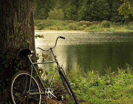 Плюсы и минусы езды на велосипеде